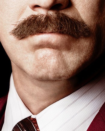 anchorman  mustache a p