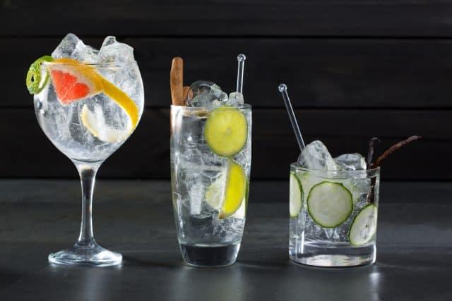 Ginsmagning med Gin Tonics